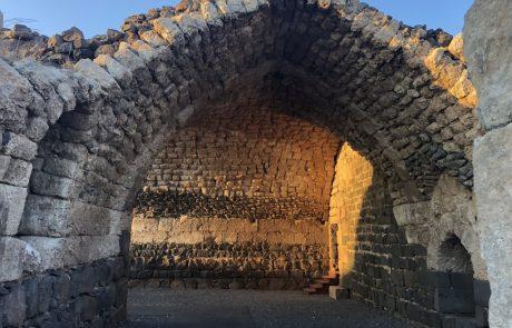רשות הטבע והגנים מזמינה את הציבור הרחב לסיור ייחודי וראשון מסוגו בגן הפסלים של תומרקין, בגן הלאומי כוכב הירדן