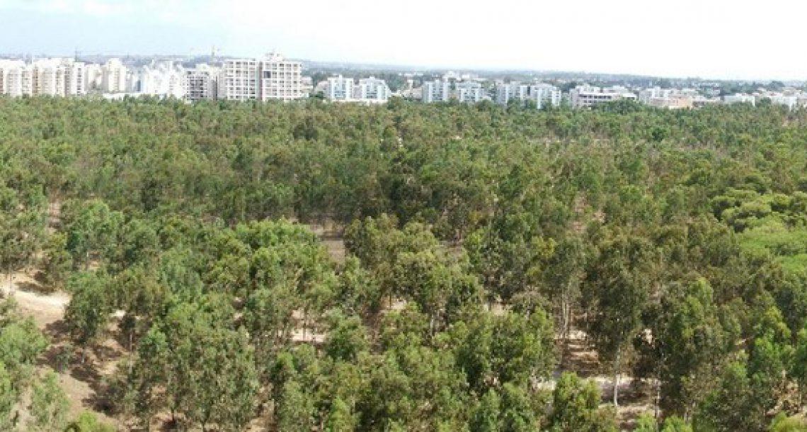 פנייה לתושבים ולעיריית נתניה-טפלו ביער ואפשרו לצמחים הנדירים לשרוד!